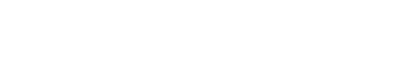 AI Logo White